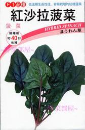 【野菜部屋~】A25 紅沙拉菠菜種子2公克(約120粒) , 澀味極少 , 適合生菜沙拉使用 , 每包12元~
