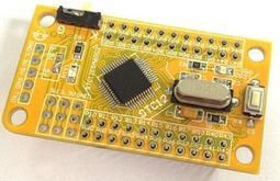 STC12C5A60S2/STC12LE5A60S2系統板 LQFP 48腳51單片機 開發板