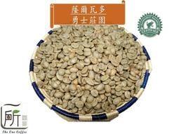 2019新季豆【一所咖啡】SSS01蕯爾瓦多 San carlos 勇士莊園 單品咖啡生豆零售390元/公斤
