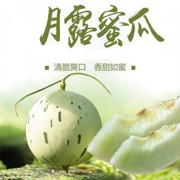 日本月露蜜瓜種子10粒100元