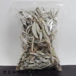 白鼠尾草 加州散裝白鼠尾草( White Sage)(重約50公克)