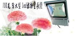 植物生長燈廠家 100瓦防水 全光譜植物生長燈 保固5年 特價3800