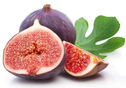 進口頂級布魯無花果【當年結果】新品種,阡插款,平均果重在100-180克,甜度高達13度