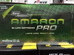 台南 汽車 電池 -崇德汽車電池 AMARON愛馬龍 600 109 090 100AH  60044.60038 台南
