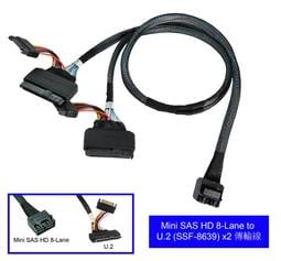 Mini SAS HD 8-Lane to U.2 (SFF-8639) x2 cable (傳輸線)