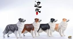 【那間模型】Jxk 邊境牧羊犬 牧羊犬 邊牧 1:6 仿真 動物 模型 站姿 公仔 寵物 狗 玩具