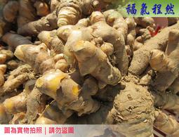[福氣程然] 新鮮薑黃 - 每台斤120元|(小農自家栽種–無噴灑農藥)